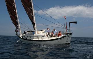 Monohull yacht sailing