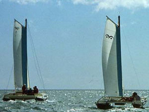 Wharram Cats sailing side by side