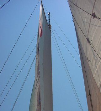 You can see the 'wing' shape of the sails with the very clean leading edge.