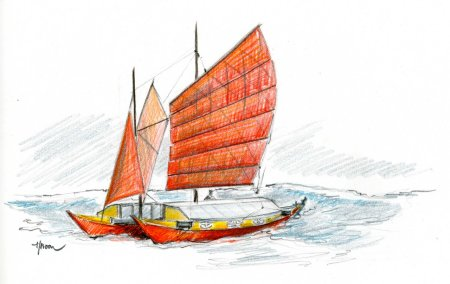 Kaimiloa drawing - By Hanneke Boon