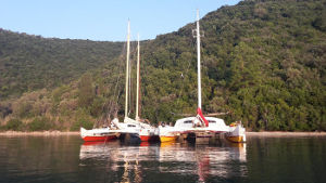 Two catamarans moored next to each other, next to land covered in trees