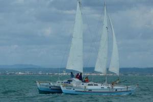 Tiki 38 Pilgrim sailing