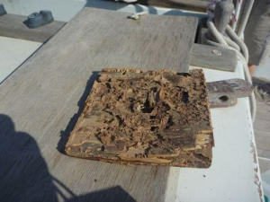 Mangled square piece of wood