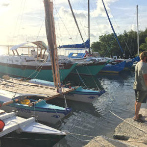 Hui Wharram 2015 - the visitor's boats lined up on the pontoon