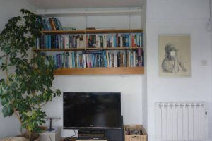 Living room with TV, plants and bookshelves