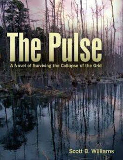 Book cover: The Pulse. A Novel of Surviving the Collapse of the Grid. Scott B Williams.