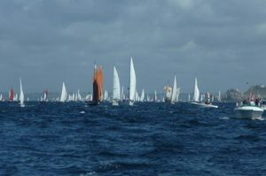 Fleet of sailing boats