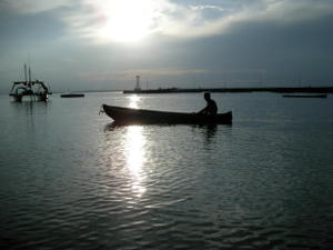 A man in a rowing boat in the harbour