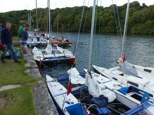 Wharram cats lined up on a quay