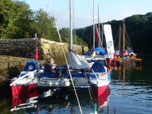 Wharram cats lined up on a quay.