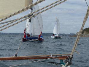 Wharram cats sailing