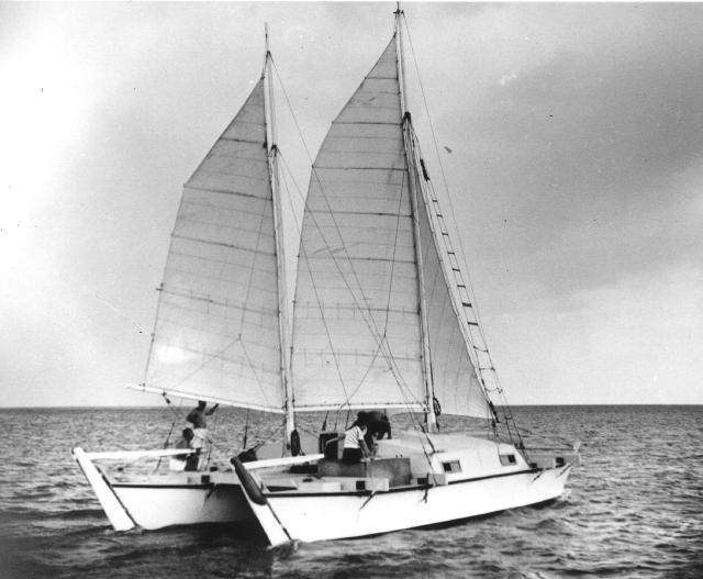 Rongo sailing