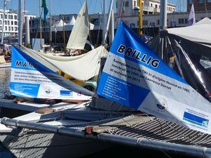 Banners on Tiki 31 Brillig
