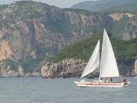 Wharram catamaran sailing on the coast