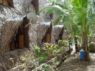 Palm thatched houses