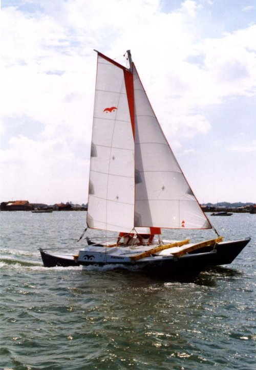 Tiki 21 with Wingsail rig