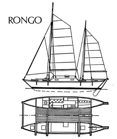 Rongo drawing