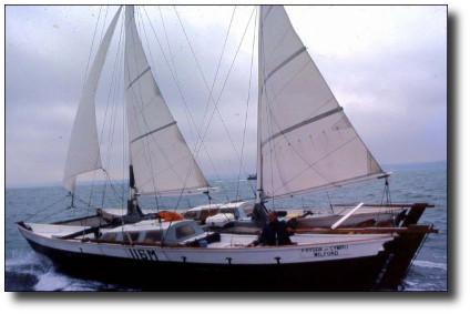 Wharram download plans catamaran