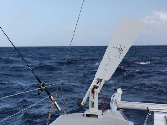 Windvane Self Steering for Wharram Catamarans